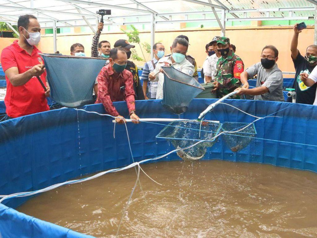 KKP Dorong Masyarakat Budidaya Ikan Pakai Sistem Bioflok