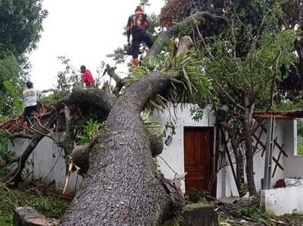 Puting Beliung di Klaten: 20 Rumah Rusak-2 Orang Luka Tertimpa Pohon
