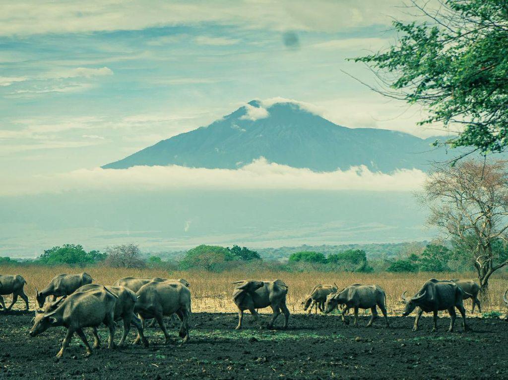 9 Tempat Wisata Indonesia yang Mirip dengan Luar Negeri
