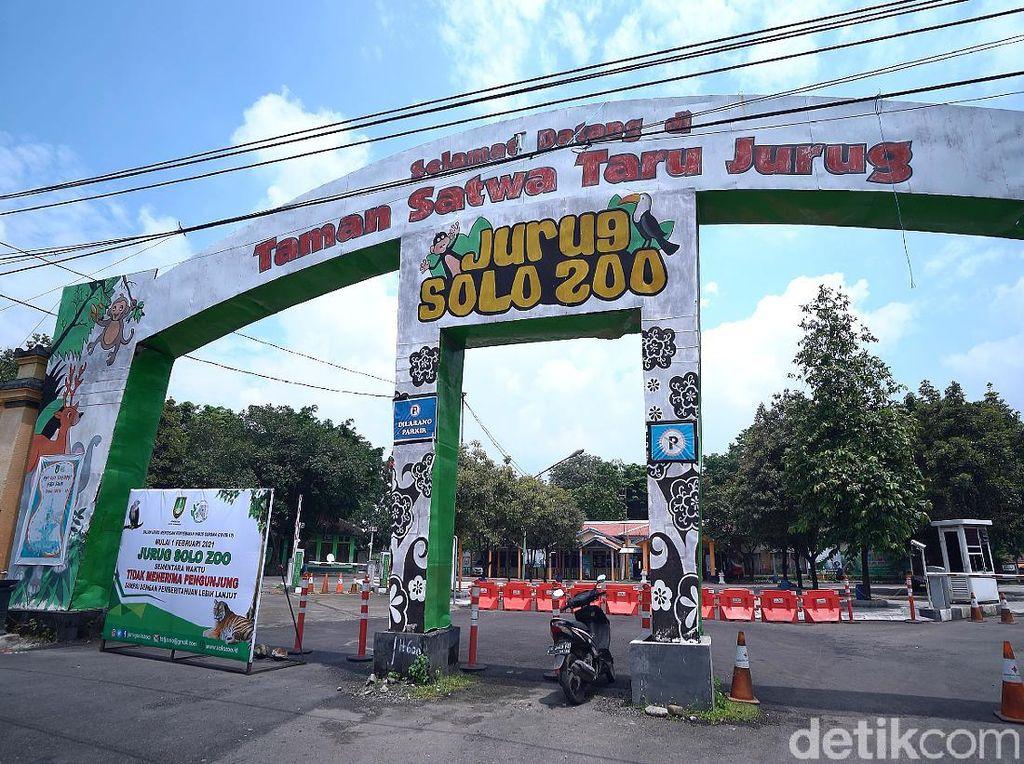Taman Satwa Taru Jurug Surakarta Dibuka Lagi, Kapasitas 30%