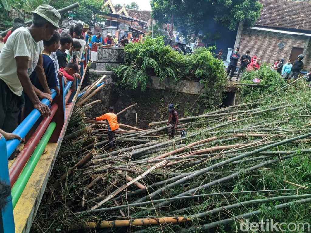 Viral Rumpun Bambu Terbawa Arus Sungai di Ponorogo Dibersihkan