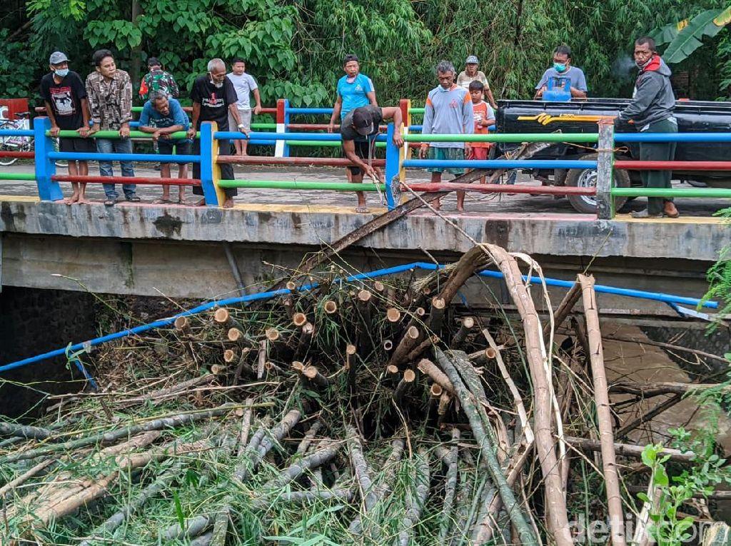 Viral Rumpun Bambu Terbawa Arus Sungai di Ponorogo Karena Hujan Deras