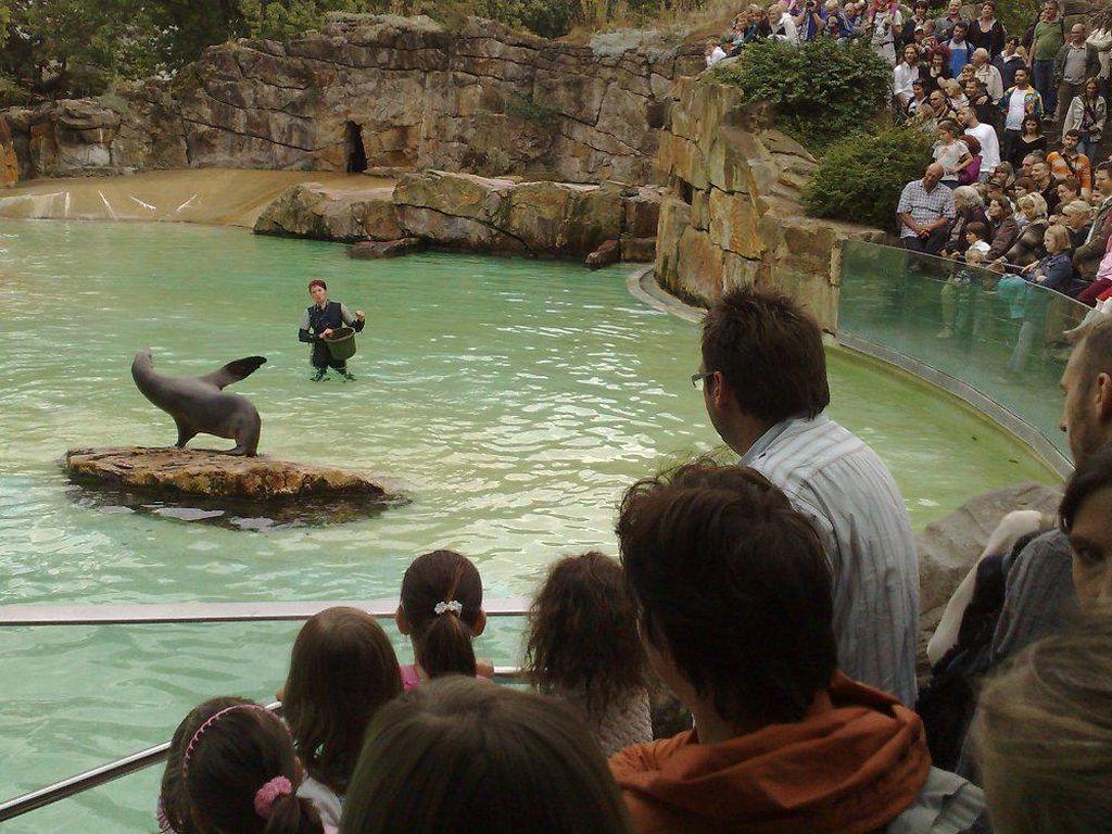 Ini Dia 5 Kebun Binatang Terbaik di Dunia!