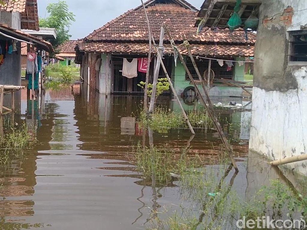 Banjir Kembali Landa Kota Pekalongan, 16 Kelurahan Terendam