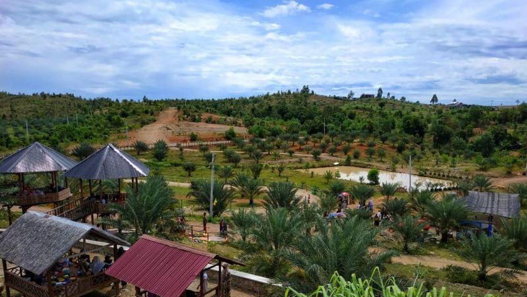Kebun Kurma Barbate, Wisata Alam Keluarga di Aceh Besar