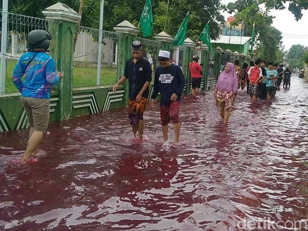 Banjir di Kota Pekalongan Berwarna Merah!