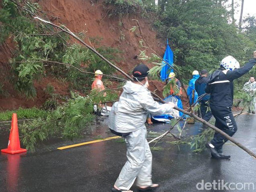 Longsor dan Pohon Tumbang di Jalur Puncak, Akses Jalan Tersendat