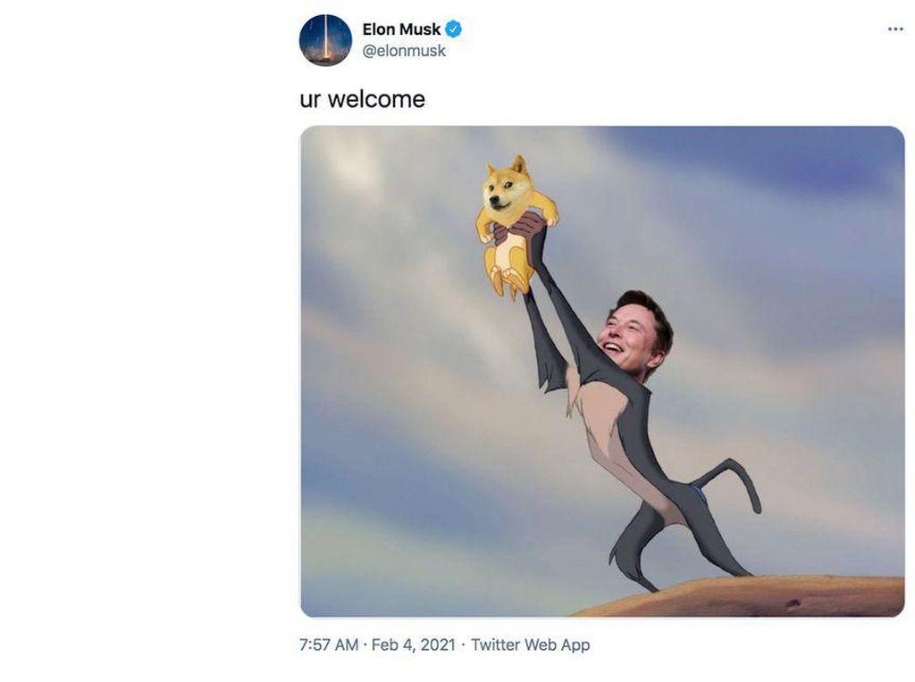 Elon Musk dan Dogecoin yang Tak Terpisahkan
