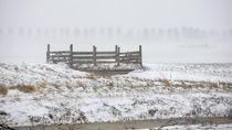 Badai Salju Langka Melanda Yunani, 3 Orang Tewas