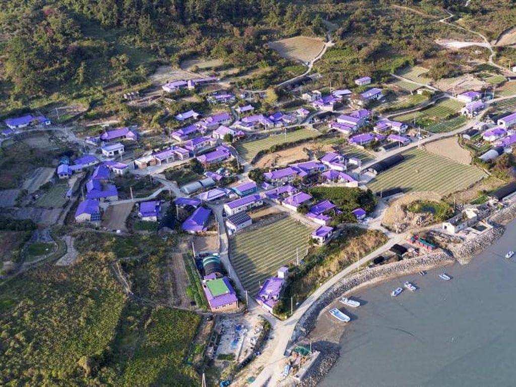 Pulau Instagramable Serba Ungu di Korea Selatan