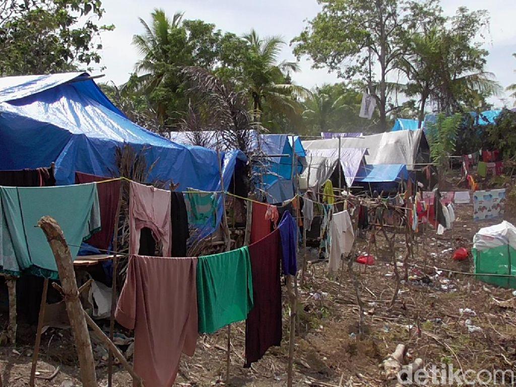 Korban Gempa Majene Masih Mengungsi, Harap Pemerintah Relokasi
