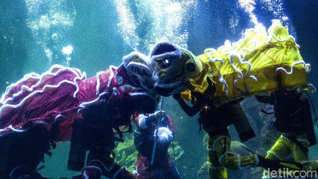 Sambut Imlek, Ancol Gelar Atraksi Barongsai di Dalam Air