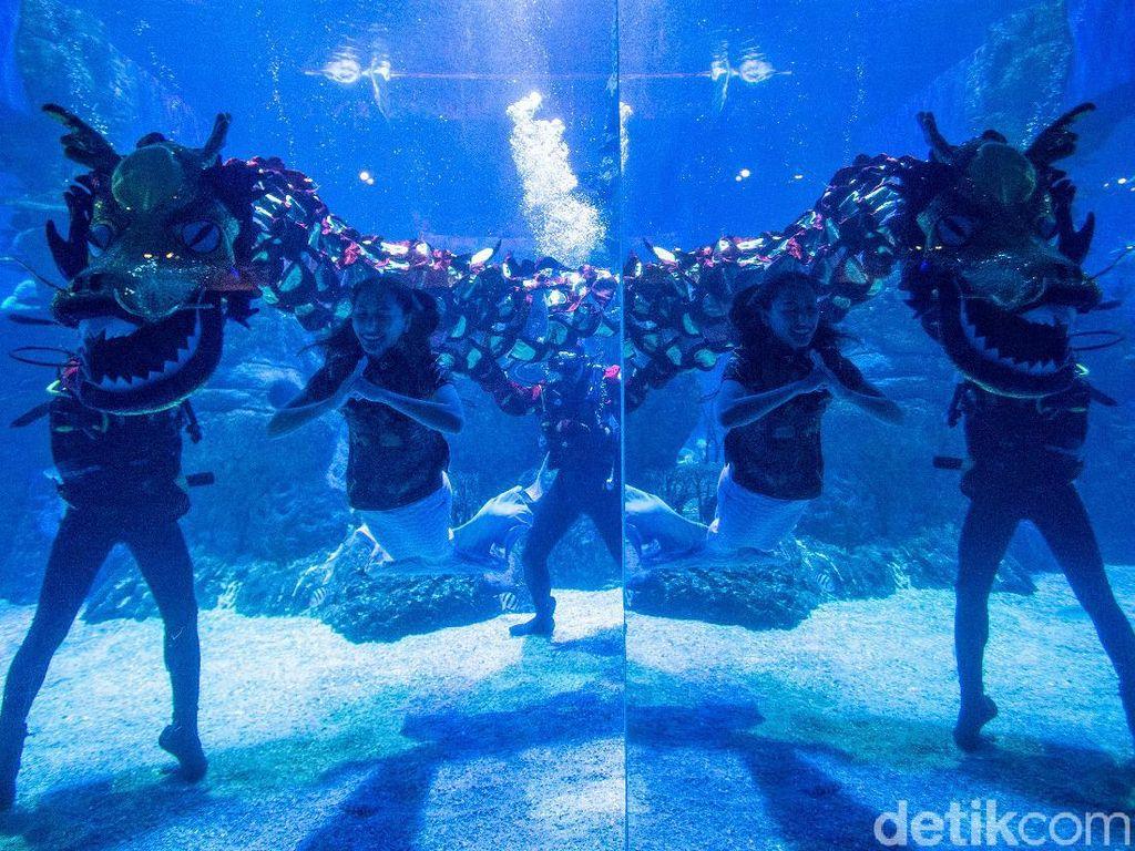 Melihat Aksi Liong Bawah Air-Putri Duyung saat Rayakan Imlek