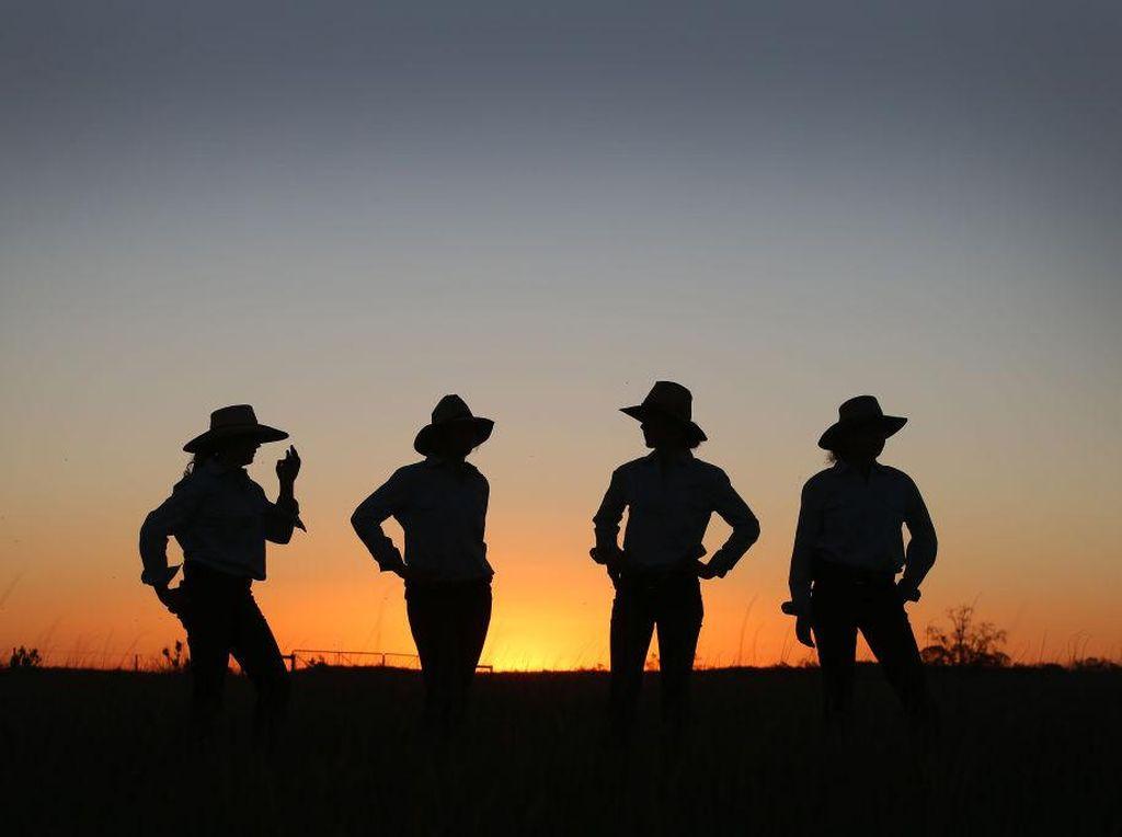 Perempuan Tangguh Peternak Sapi Australia