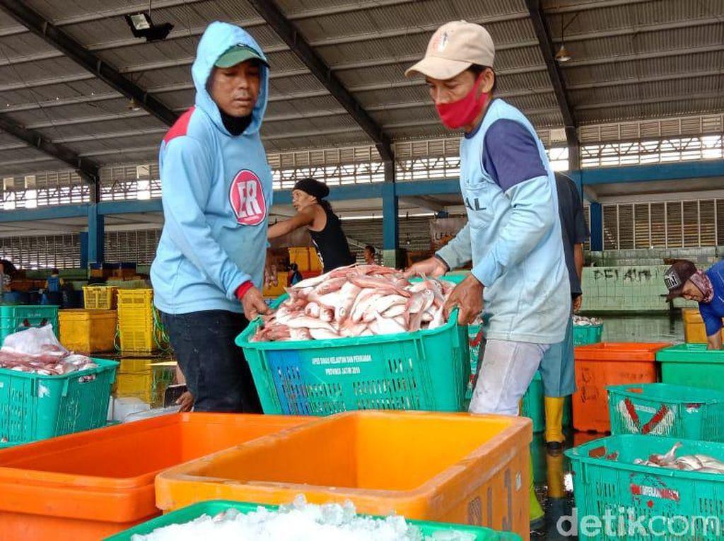 Harga Ikan Laut di Lamongan Naik Terdampak Cuaca Buruk