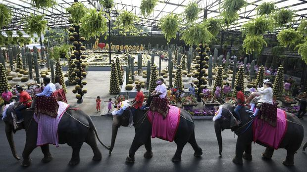 Couples ride elephants during a Valentine's Day celebration at the Nong Nooch Tropical Garden in Chonburi province, Thailand, February 14, 2021. REUTERS/Chalinee Thirasupa