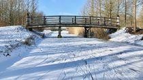 Ketika Taman Kota Membeku, Inilah Waktu Tepat Bermain Ski
