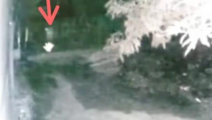 Tangkapan layar video viral pocong dikejar anjing di Jeneponto, Sulsel (dok. Istimewa).