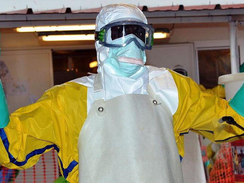 Wabah Ebola Kembali Landa Afrika Barat, Seberapa Berbahaya?