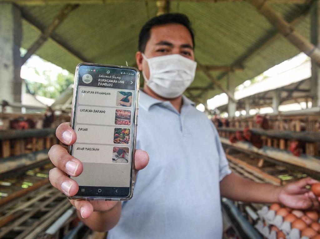 Aplikasi Ini Mudahkan Peternak Milenial Transaksi Telur