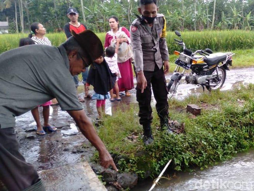 Balita 3 Tahun di Banyuwangi Tewas Tenggelam Terseret Arus Selokan