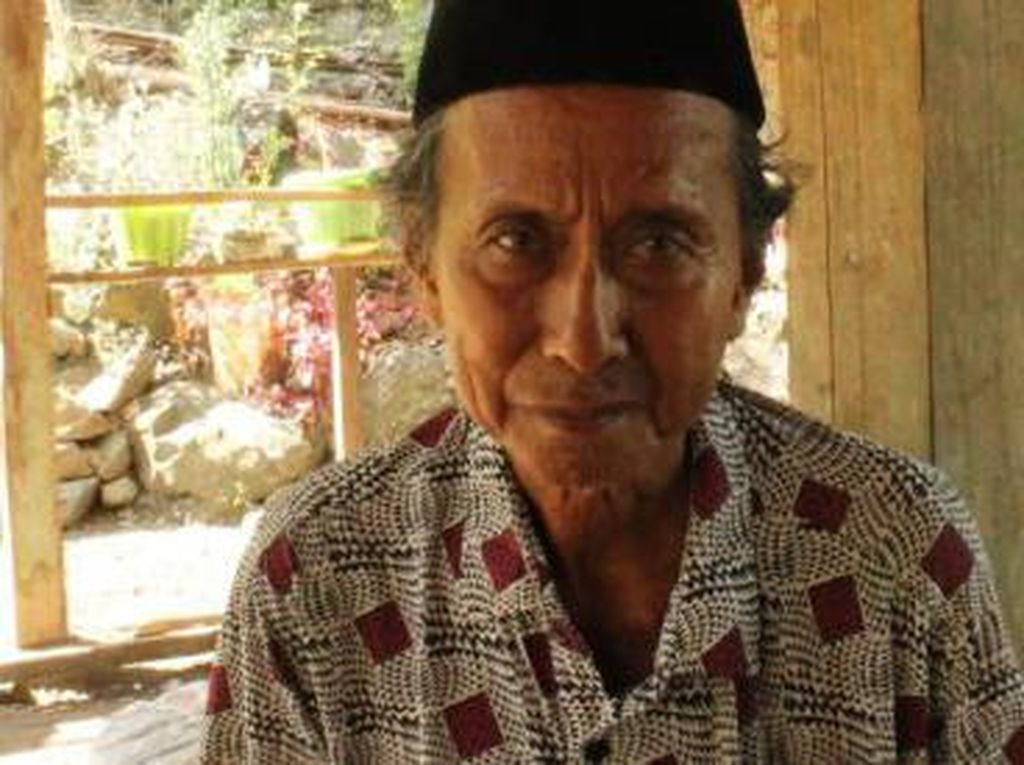 Duduk Perkara Kakek Tebang Pohon di Hutan Divonis 3 Bulan Penjara