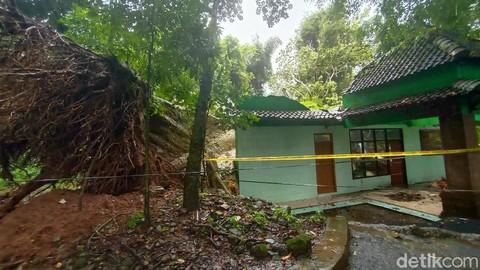 Pohon tumbang di petilasan ratu kalinyamat di desa tulakan kecamatan donorojo jepara kamis 1822021 169
