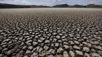 Sering Disinggung Sri Mulyani, Seserius Apa RI Hadapi Krisis Iklim?