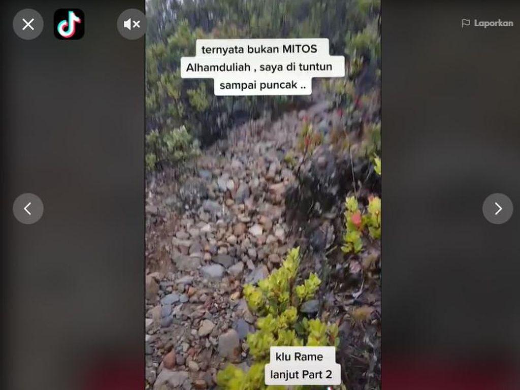 Viral Pendaki Gunung Lawu Dituntun Burung Jalak, Ini Mitos dan Faktanya