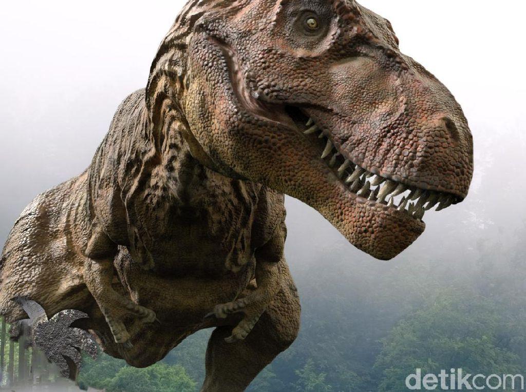 Foto: Memberi Makan Dinosaurus di Lembang
