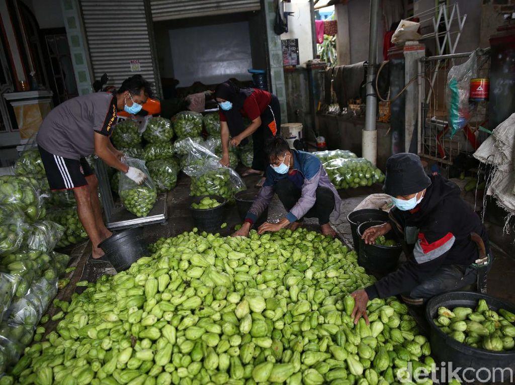Dari Lahan 350 Ha, Gapoktan di Bandung Produksi Labu Siam 20 Ton/Hari