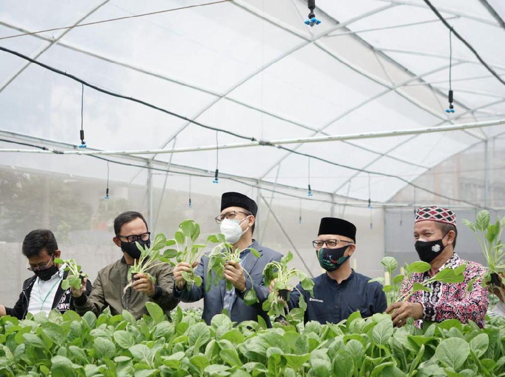 Bangun Ketahanan Pangan, BI Jabar Beri Bantuan Digital Farming ke Ponpes