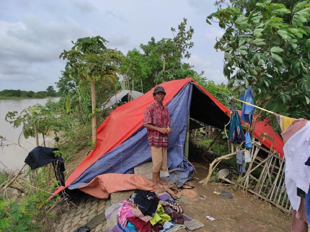 Warga Pebayuran Bekasi Ini Bertahan di Dekat Tanggul Jebol: Jaga Ternak
