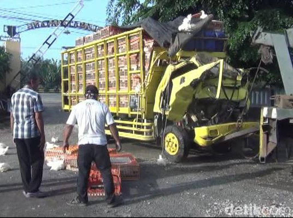 Truk Pengangkut Ayam Tabrak Tronton di Subang, Dua Orang Tewas