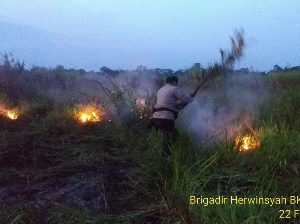 2 Hektare Lahan Bekas Karhutla di Jambi Terbakar, Dipadamkan Polri-Warga