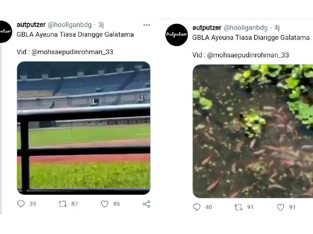 Viral Kolam Ikan di Stadion GBLA, Ini Penjelasan Pemkot Bandung