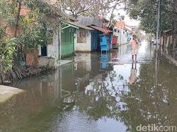 Banjir di Kota Pekalongan, 1.563 Jiwa Masih Mengungsi