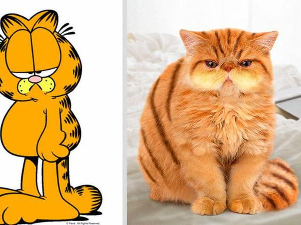 Gemasnya Animasi Garfield Hingga Squidward di Dunia Nyata