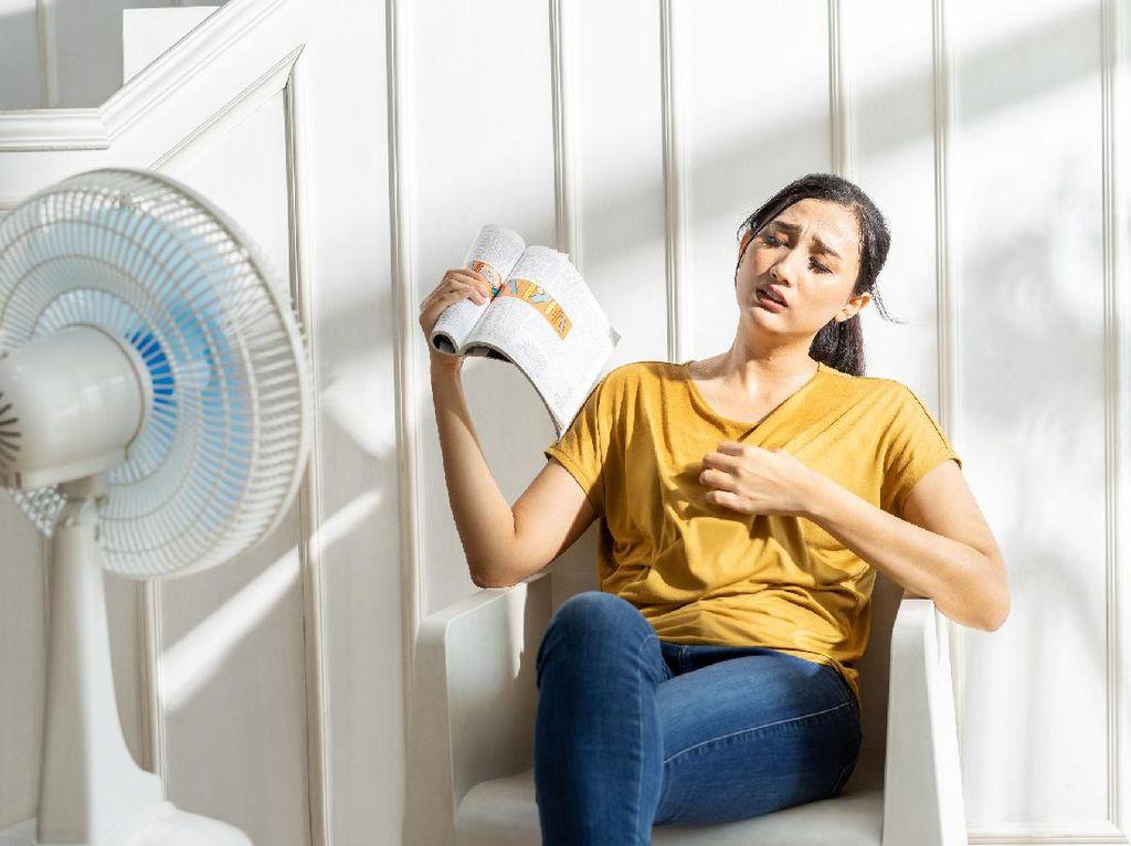 Udara di Rumah Terasa Panas? Yuk Baca Tips Siasatinya