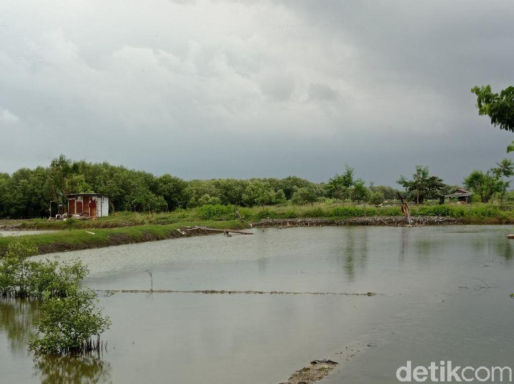 Mantul, Cirebon akan Sulap Lahan 15 Hektar Jadi Wisata
