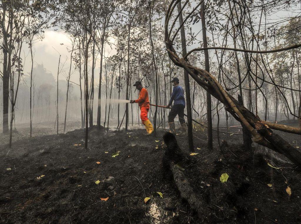 Karhutla di Riau Makin Meluas