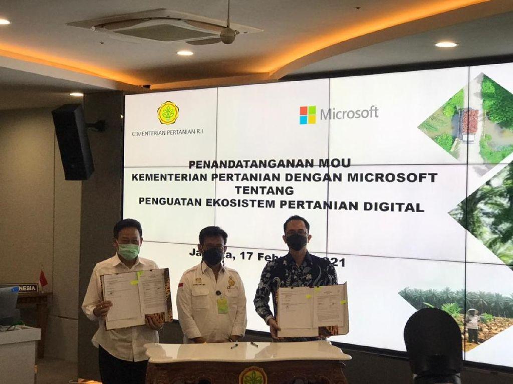 Gandeng Kementan, Microsoft Bikin Solusi Bertani dengan Teknologi