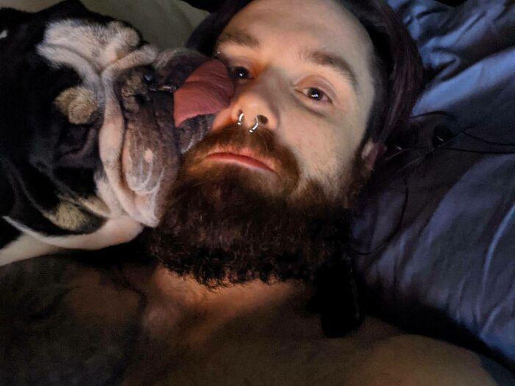 Tingkah Anjing yang Bikin Kesal tapi Menggemaskan