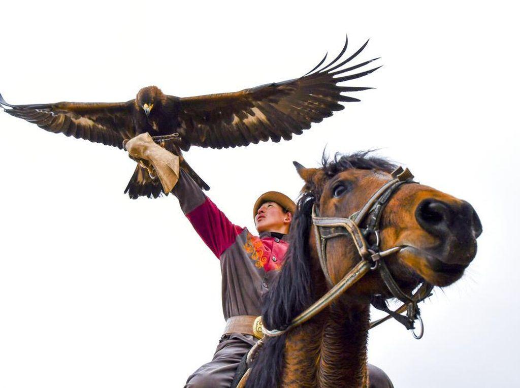 Elang Emas Jadi Teman Berburu Suku Kyrgyzstan