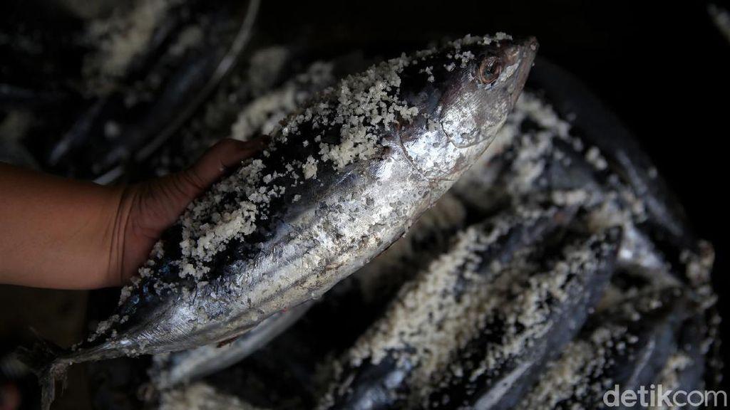 Raup Untung Belasan Juta Lewat Bisnis Olahan Ikan Pindang
