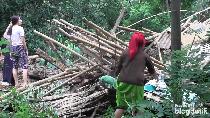 Belasan Rumah dan Hewan Ternak Warga Lumajang Tertimbun Longsor, 37 KK Mengungsi