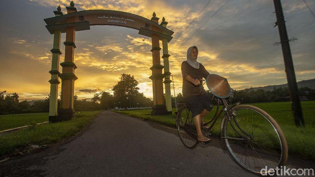 Menengok Kampung Wisata Jamu Kiringan di Bantul