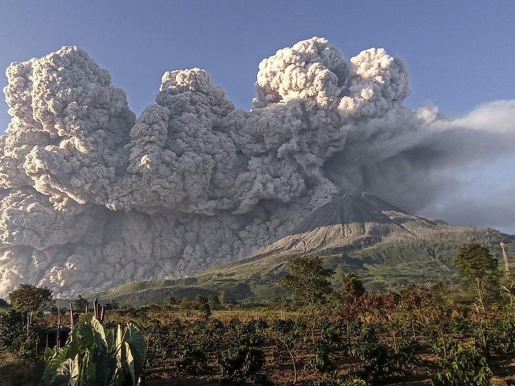 3 Kali Sinabung Erupsi dalam Sehari, Abunya Sampai ke Aceh