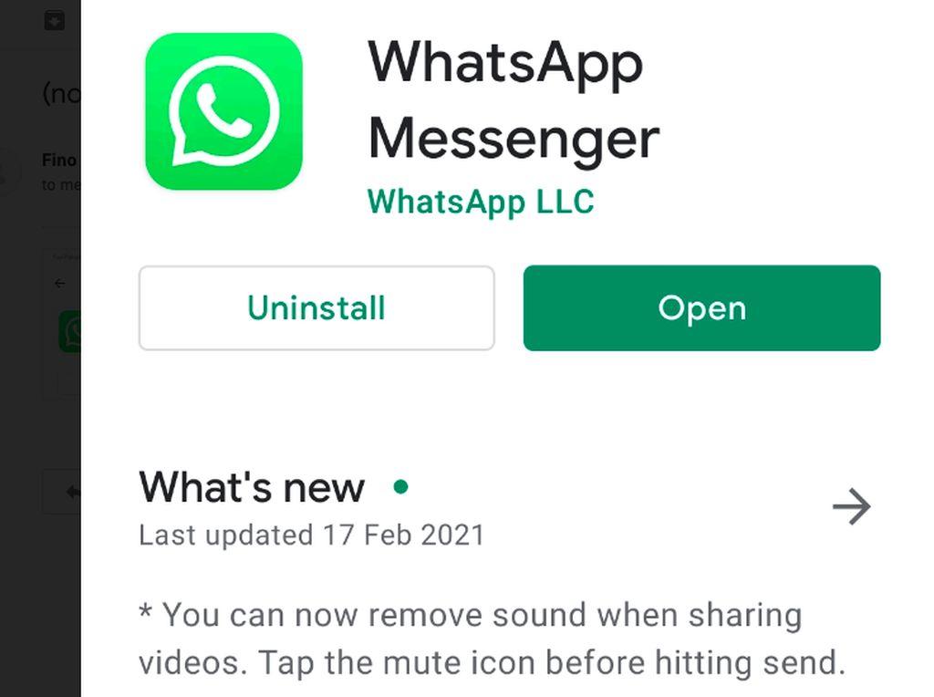 Fitur Baru WhatsApp Masuk Indonesia: Mute Video