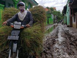 Banjir di Probolinggo Surut, Warga Mulai Bersih-bersih Lumpur Setebal 10 Cm